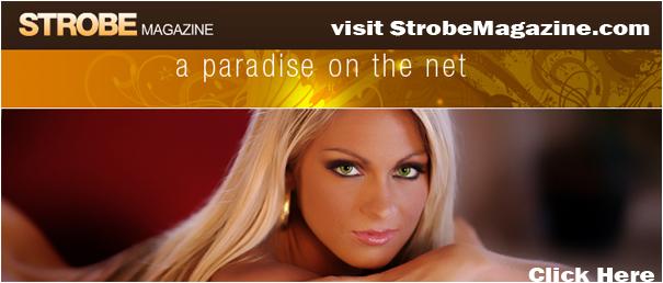 strobe-header